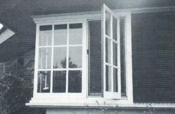 Distinctive And Elegant Windows